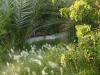jt-garden-path-1sm
